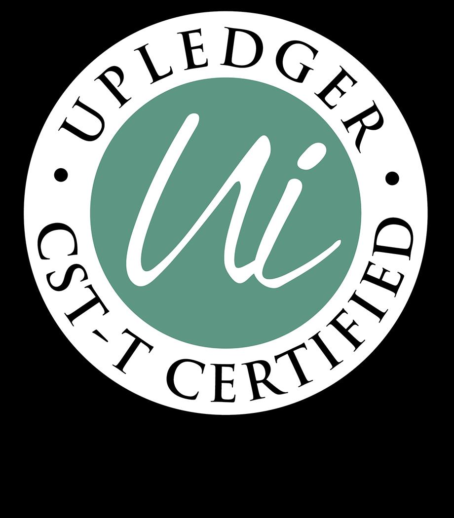 UI CST-T Credential Badge